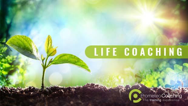 Prova il Life Coaching
