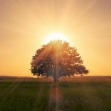 Inno alla vita: vivi come un'alba!