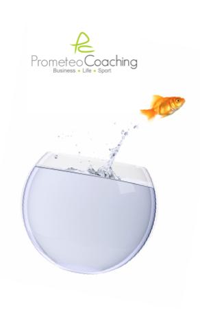 i pilastri del successo aziendale | Prometeo Coaching
