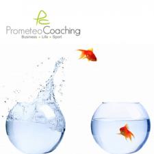 Business Coaching: valorizzare le Risorse Umane