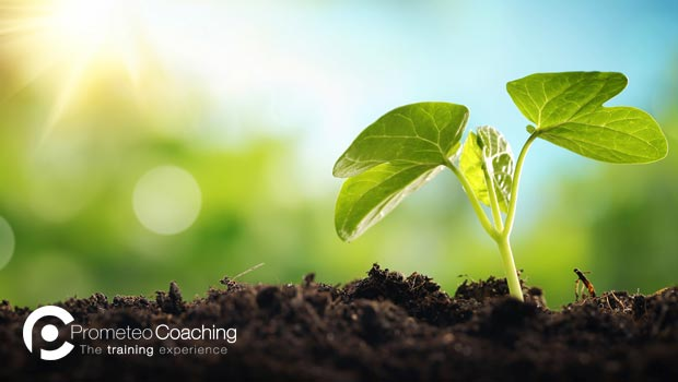 Motivazione e Resilienza | Prometeo Coaching