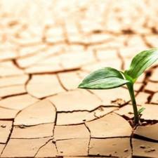 Come superare le difficoltà allenando la Resilienza
