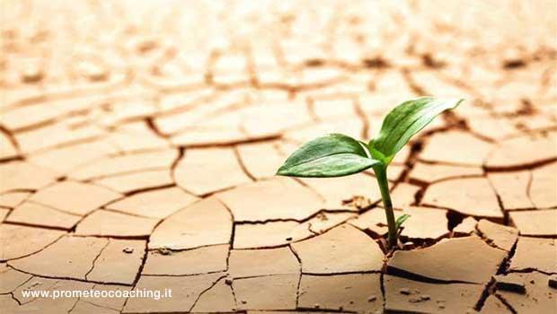 Allenare la Resilienza