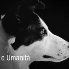 Virtù: Amore e Umanità